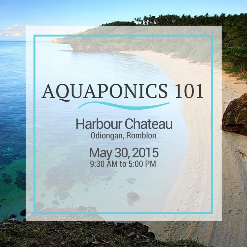 Aquaponics 101 in Romblon on May 30, 2015