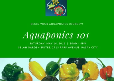 Aquaponics 101 on May 14, 2016 in Pasay