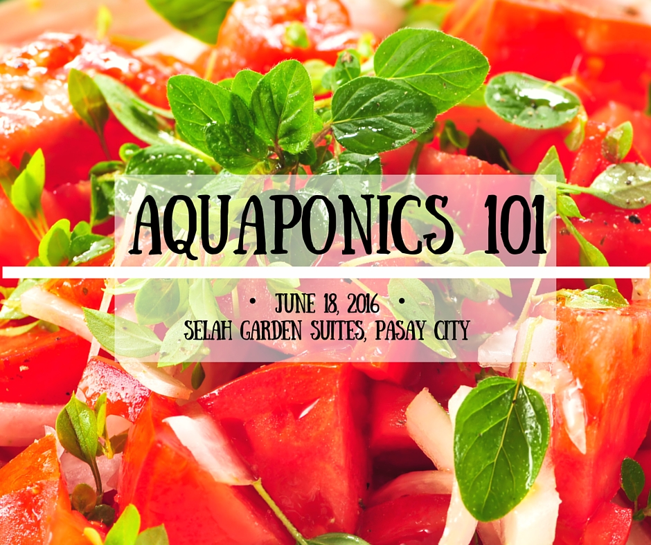 Aquaponics 101 on June 18, 2016 in Pasay