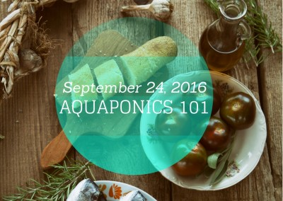 Aquaponics 101 on Sept. 24, 2016 in Pasay