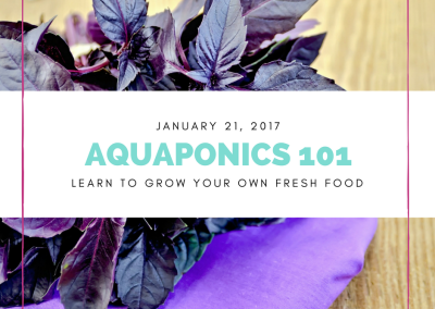 Aquaponics 101 on Jan. 21, 2017 in Pasay