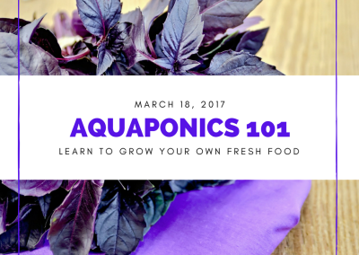Aquaponics 101 on March 18, 2017 in Pasay