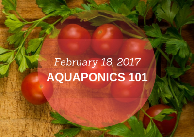 Aquaponics 101 on Feb. 18, 2017 in Pasay