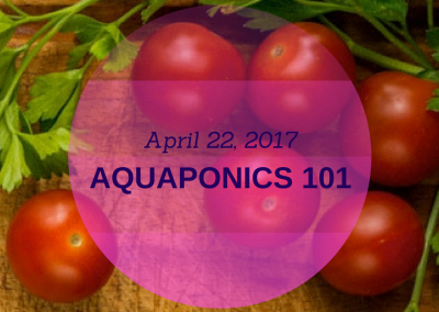 Aquaponics 101 on April 22, 2017 in Pasay