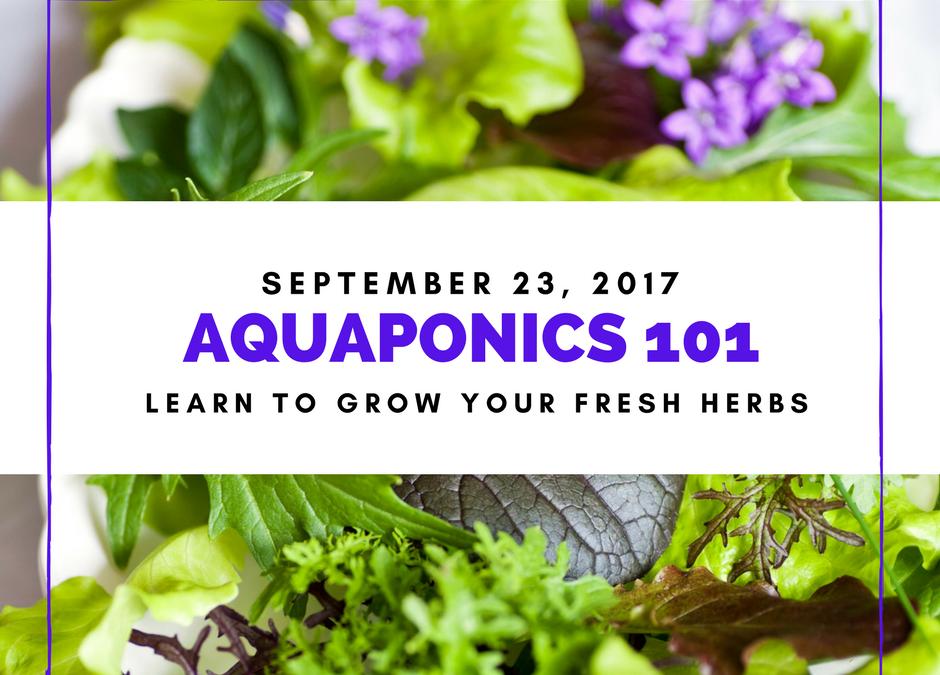 AQUAPONICS 101 on Sept. 23, 2017