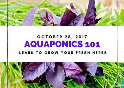 AQUAPONICS 101 on Oct. 28, 2017 in Taguig