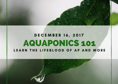 Aquaponics 101 on Dec. 16, 2017 in Taguig
