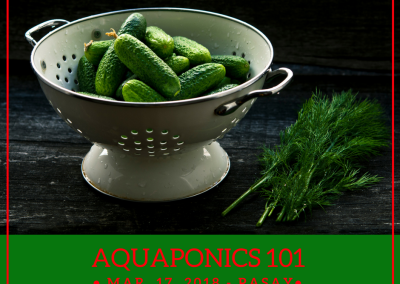 Aquaponics 101 on March 17, 2018 in Pasay City