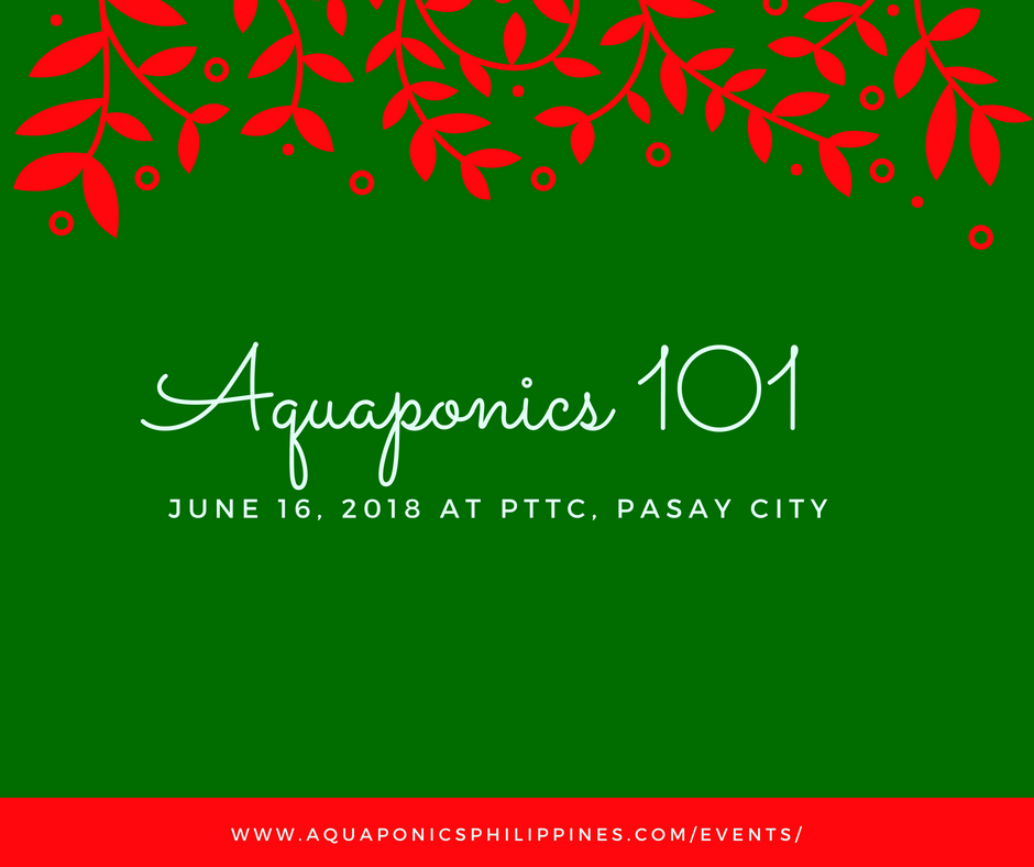 Aquaponics 101 on June 16, 2018 at PTTC, Pasay