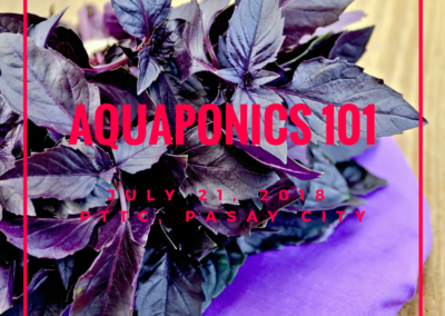 Aquaponics 101 on July 21, 2018 at PTTC, Pasay