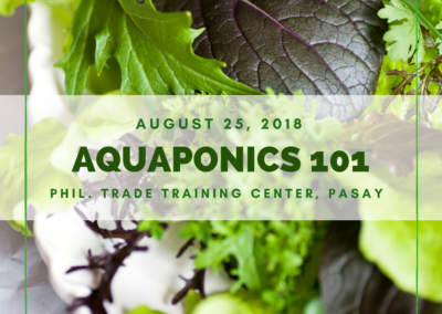 Aquaponics 101 on August 25, 2018 at PTTC, Pasay