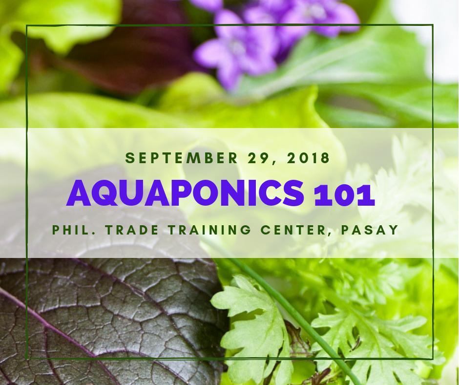 Aquaponics 101 on Sept. 29, 2018 at PTTC, Pasay