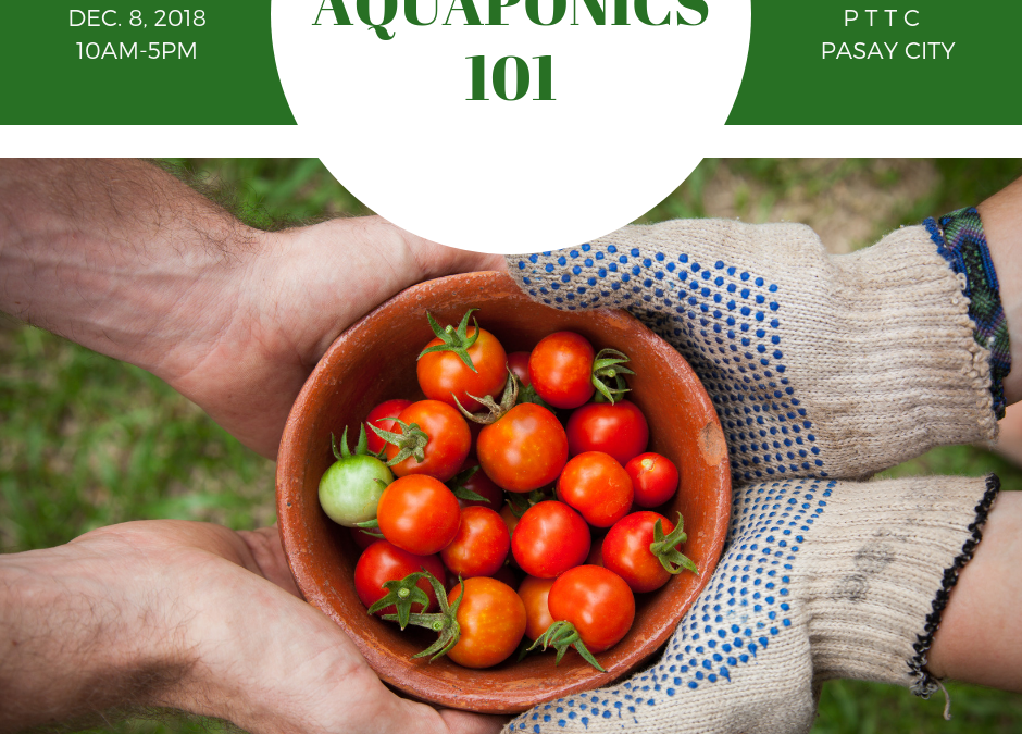 Aquaponics 101 on Dec. 8, 2018 at PTTC, Pasay City