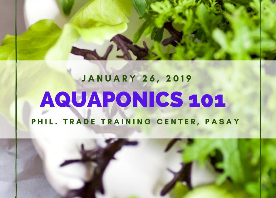 Aquaponics 101 on Jan. 26, 2019 at PTCC, Pasay