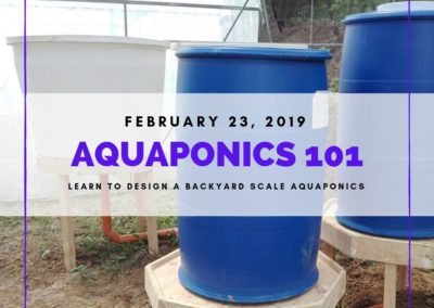 Aquaponics 101 on Feb. 23, 2019 at PTTC, Pasay