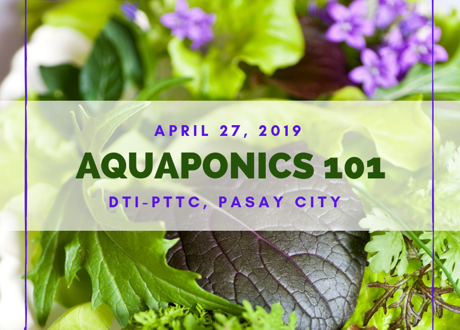 Aquaponics 101 on April 27, 2019 at PTTC, Pasay