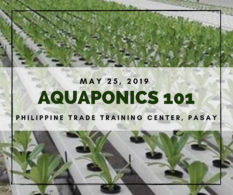 Aquaponics 101 on May 25, 2019 at DTI-PTTC, Pasay