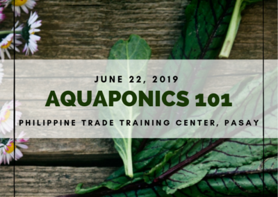 Aquaponics 101 on June 22, 2019 at DTI-PTTC, Pasay