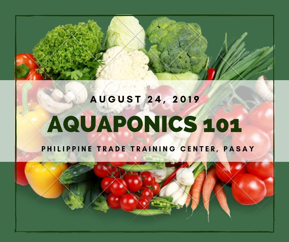 Aquaponics 101 on August 24, 2019 at PTTC, Pasay