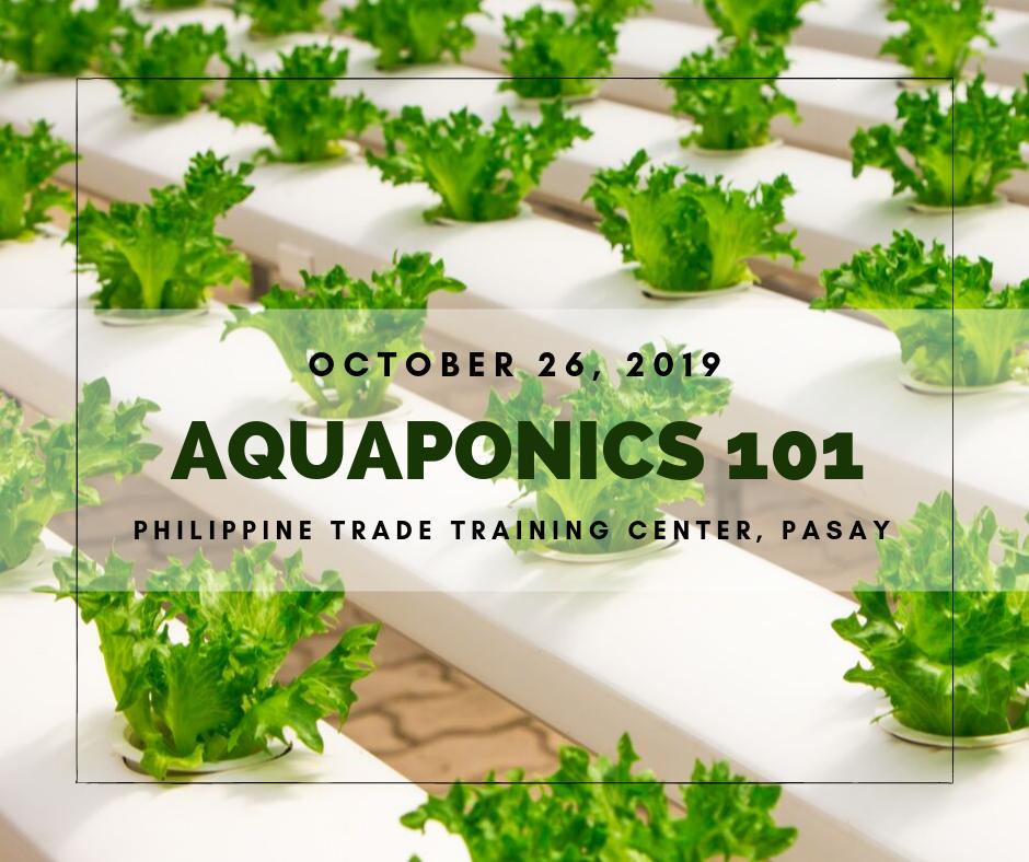 Aquaponics 101 on Oct. 26, 2019 at PTTC, Pasay